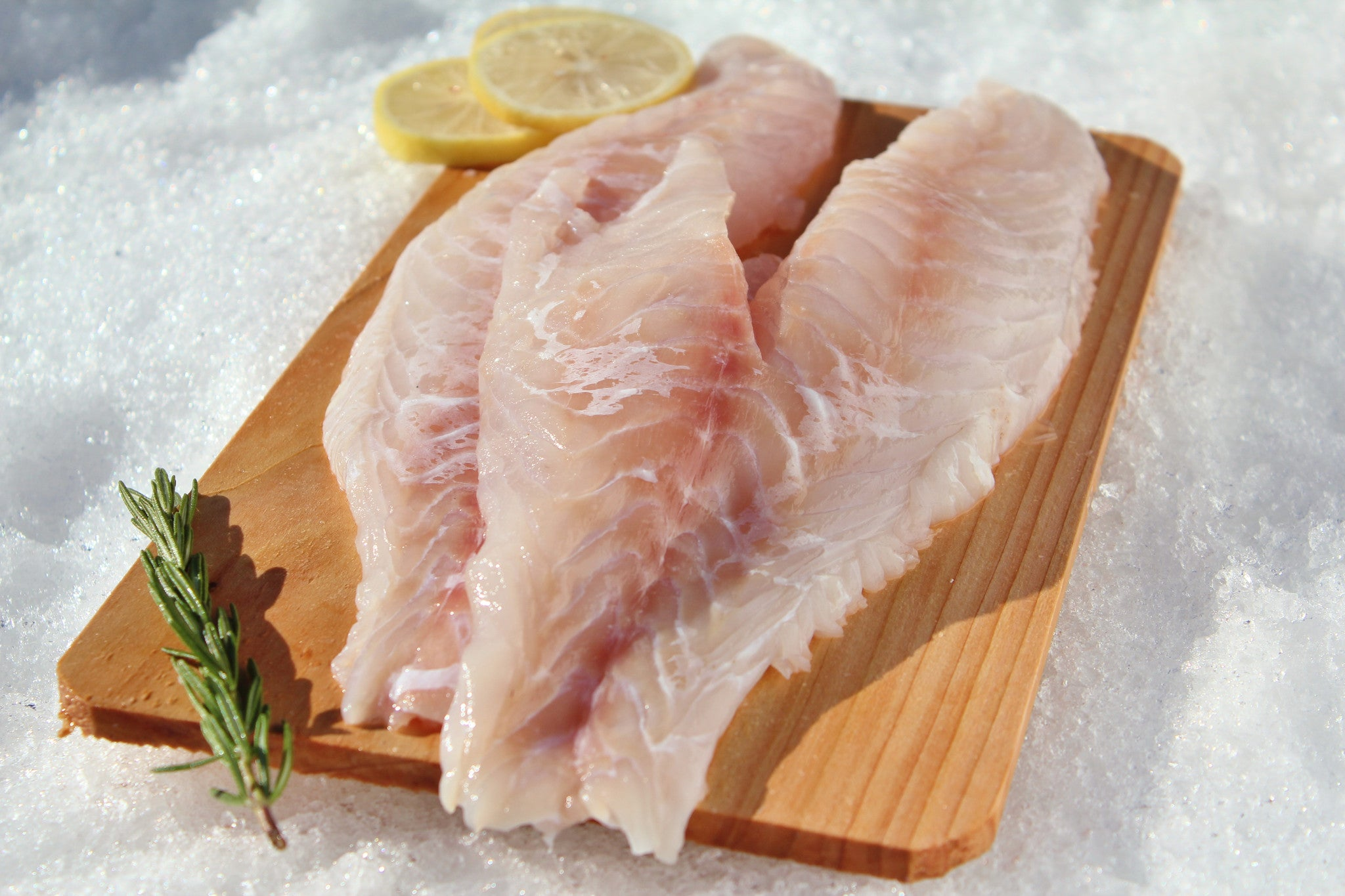 Grouper (Fillets) - Katies Seafood Market
