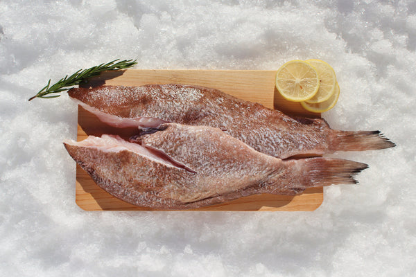 Grouper fillets katies seafood market for Grouper fish recipes