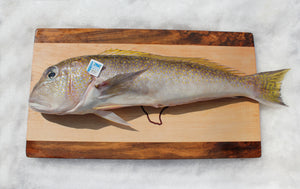 Tilefish (Fillets) - Katies Seafood Market