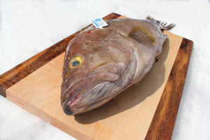 Grouper (Whole) - Katie's Seafood Market