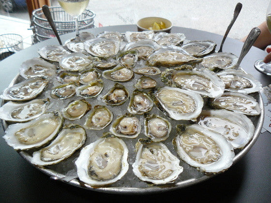 Oysters (Gallon)