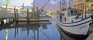 Private Boat Tours: GALVESTON TX