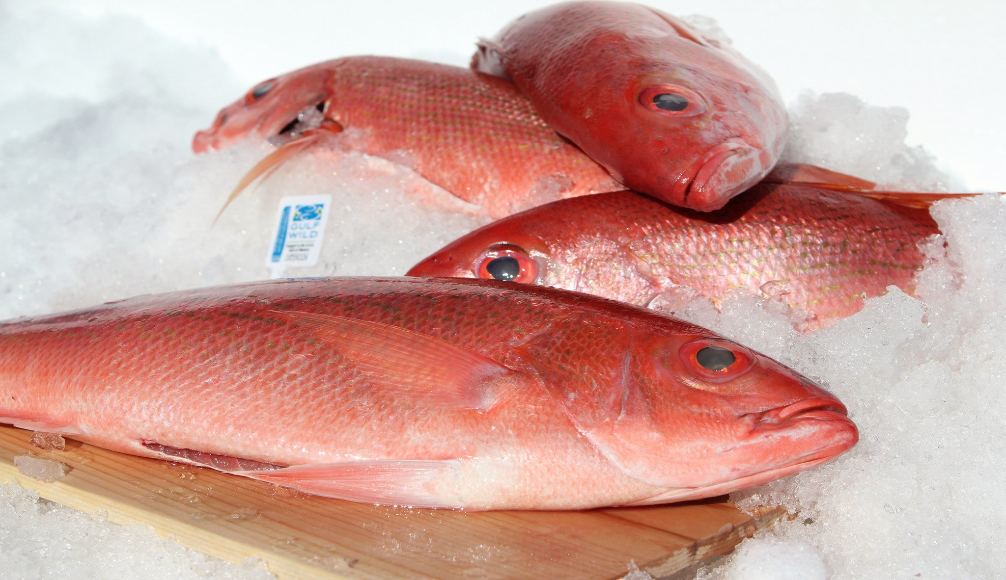 Redfish whole katies seafood market for Red fish taste