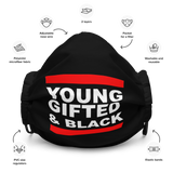 Young, Gifted & Black Face Mask