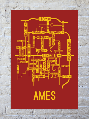 Ames, Iowa Street Map Print