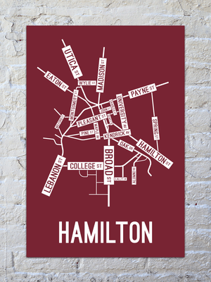 Hamilton, New York Street Map Print