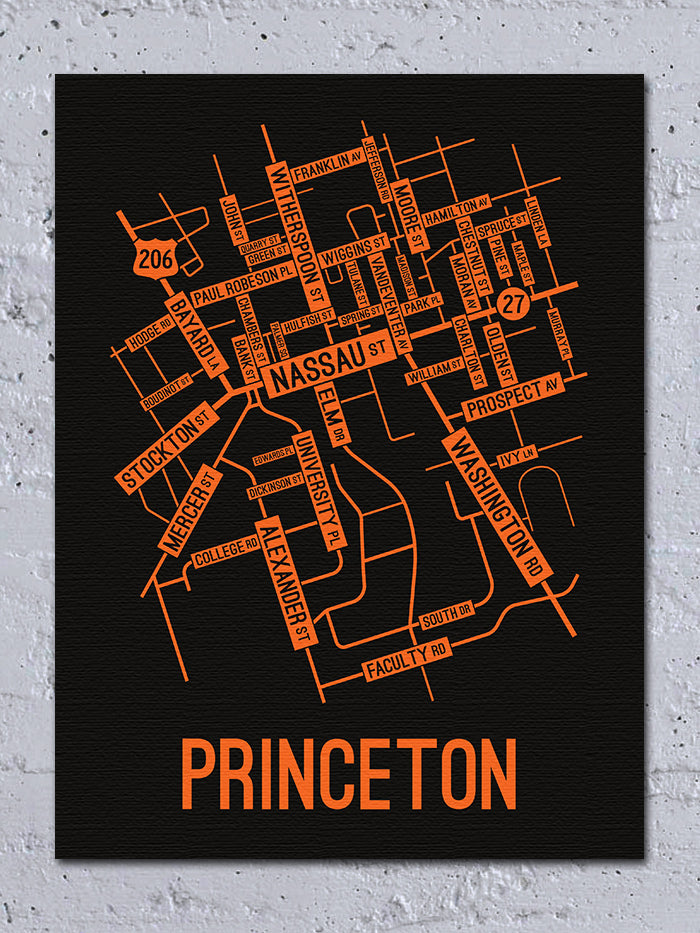 Princeton, New Jersey Street Map Canvas