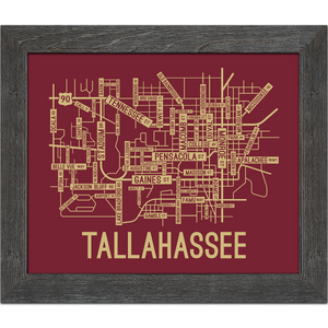 Tallahassee, Florida Street Map Screen Print