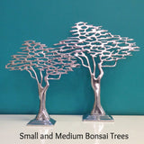 Bonsai Tree - Medium