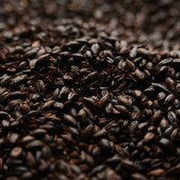 Briess Black (Black Patent) Malt 1 lb