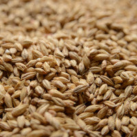 Briess 2-Row Pale Ale Malt 1 oz