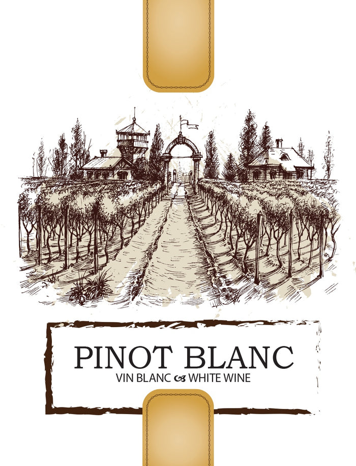 Pinot Blanc Wine Labels - 30/Pack