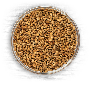 Briess Apple Wood Smoked Malt 1 lb