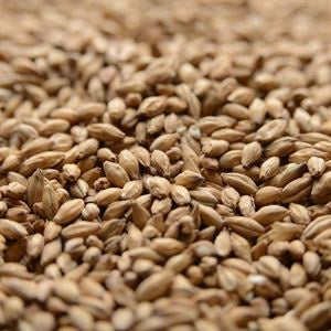 Simpsons Peated Malt 1 oz