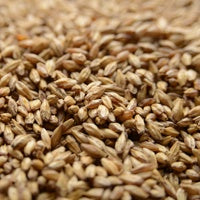 Briess Carapils Malt 1 lb