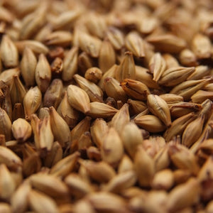 Castle Cara Ruby Malt 1 lb