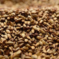 Briess Caramel 60L Malt 1 oz