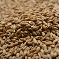 Briess 2-Row Brewers Malt 50 lb Sack