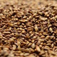 Briess Caramel 80L Malt 1 oz