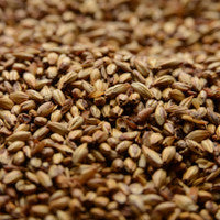 Briess Caramel 40L Malt 1 oz