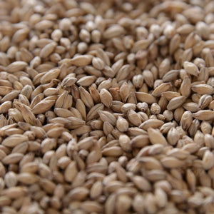 Crisp No. 19 Floor-Malted  Maris Otter Malt (Formerly Gleneagles) 1 lb