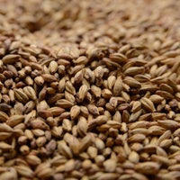 Briess Special Roast Malt 1 lb