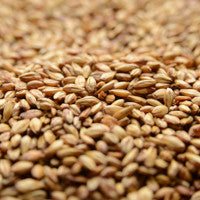Briess Caramel 10L Malt 1 oz