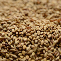 Briess Caramel 20L Malt 1 oz