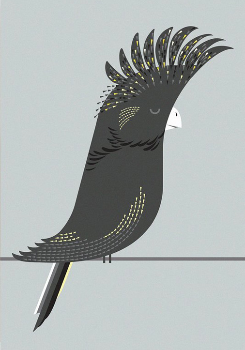 I Ended Up Here Greeting Card: Black Cockatoo