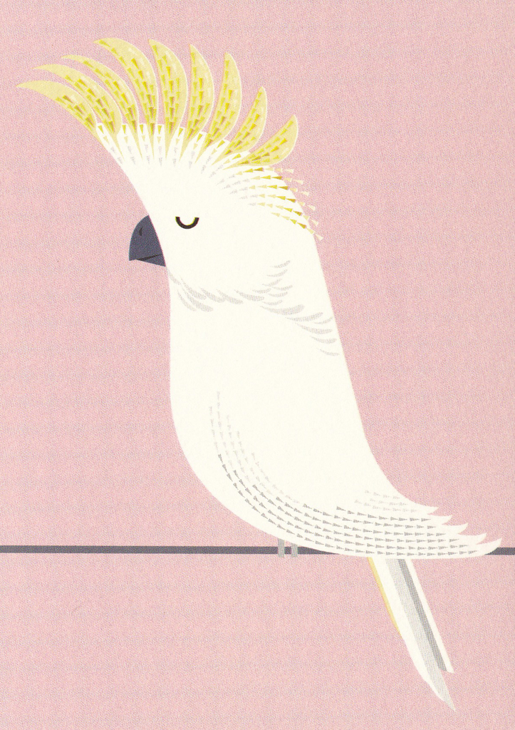 I Ended Up Here Greeting Card: Cockatoo