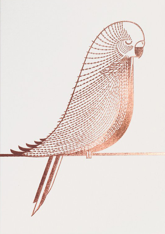 I Ended Up Here Greeting Card: Budgie (Foil)