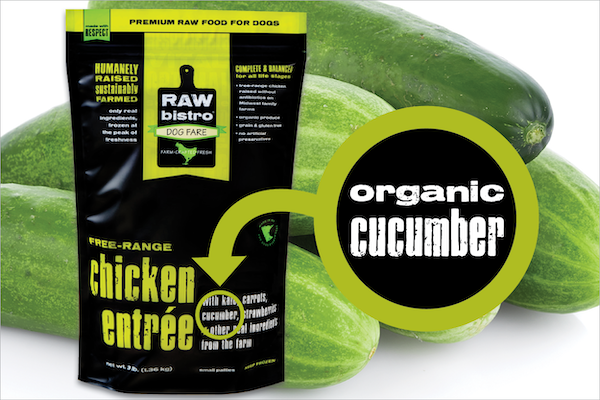 Organic cucumber for dogs
