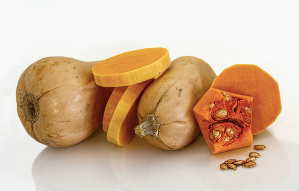 butternut squash for dogs