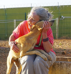 Lou Ann Forbes meeting a Galgo pup in Spain.