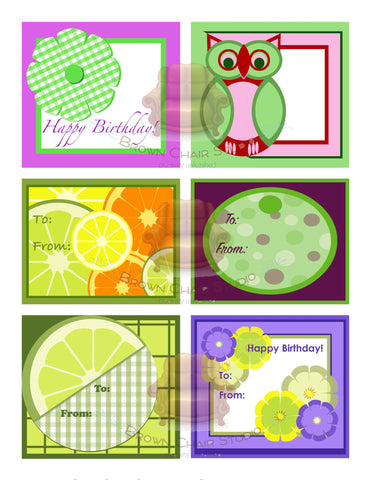 Everyday Gift Tags - Green