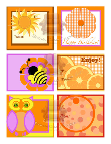 Everyday Gift Tags - Orange
