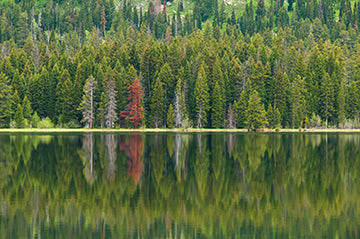 Taggart Lake, © Globop Photography