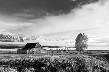 The Barn, © Globop Photography