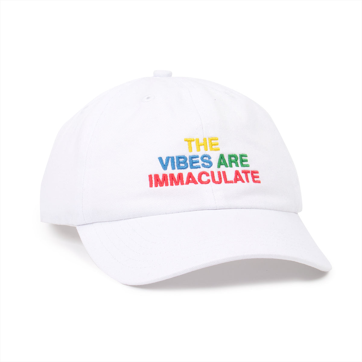The Vibes Are Immaculate Dad Hat