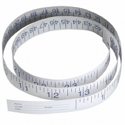 Measuring Tape - Paper