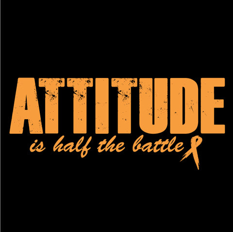 Attitude Decals- many colors