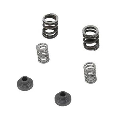 BD-Power 1040187 3000 RPM Governor Spring Kit