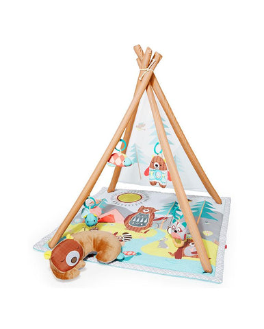 SKIP HOP CAMPING CUBS DEVELOPMENTAL TOYS ACTIVITY GYM