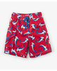 LOOP-THE-LOOPING HAMMERHEADS BOARD SHORTS