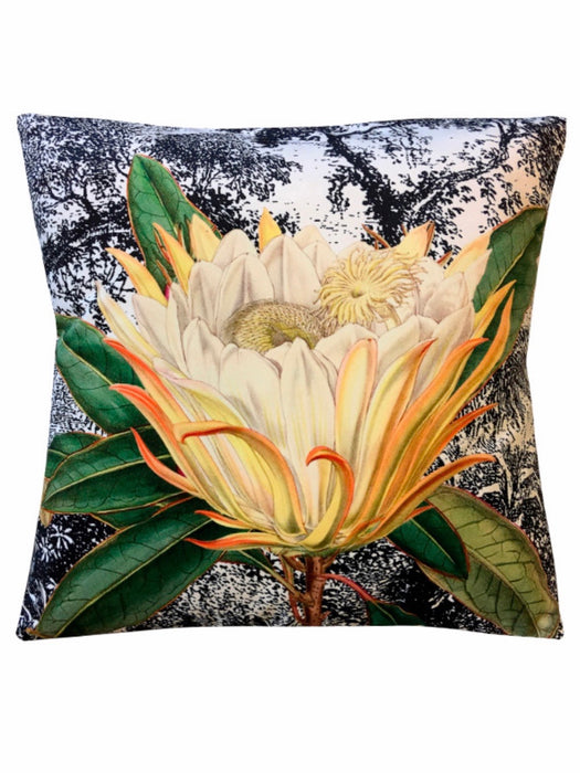 Velvet Cushion Yellow Protea