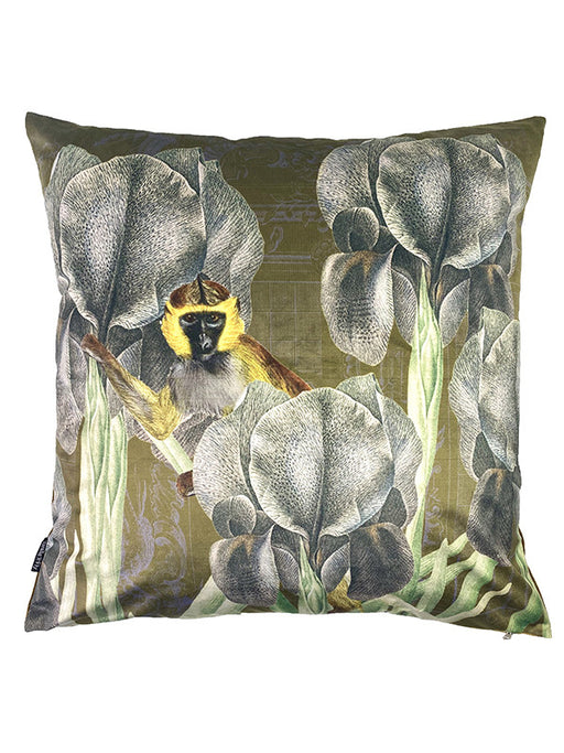 Velvet Cushion Antique Ape