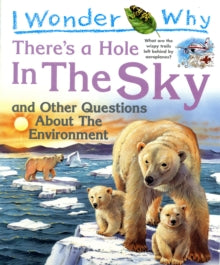 I Wonder Why There's a Hole in the Sky : and Other Questions About the Environment by Sean Callery (Author)