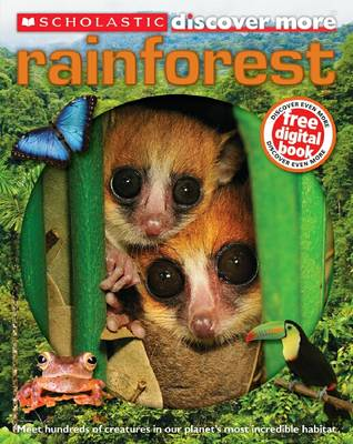 Discover more : Rainforest