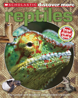 Reptiles - Discover More (Paperback) Penny Arlon (author)
