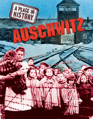 Auschwitz - A Place in History 1 (Hardback)